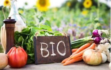 Agricoltura biologica, la scelta giusta per salute ed ambiente